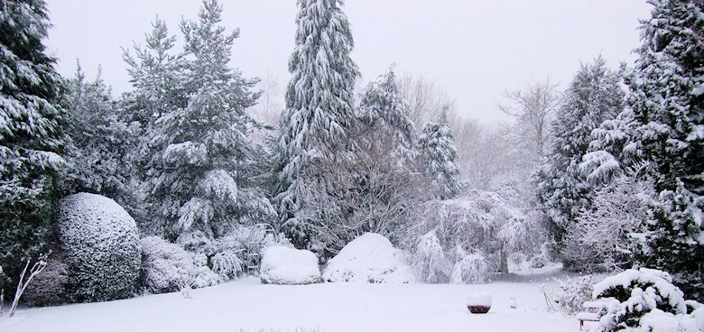 130118 snow