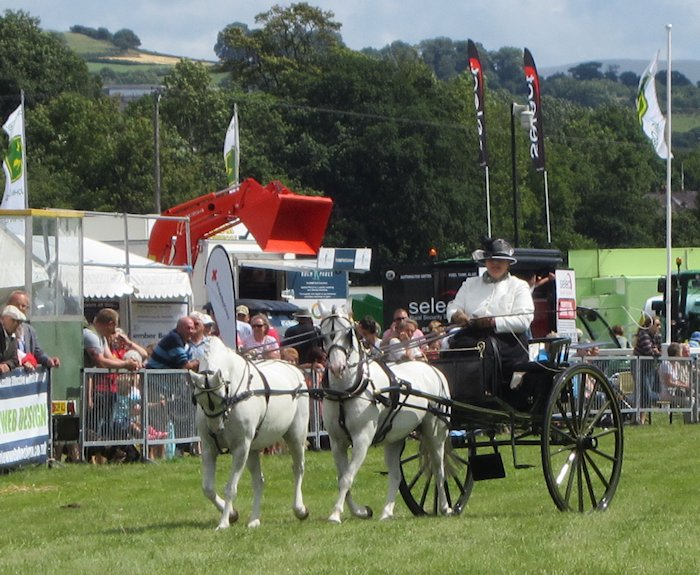 Breconshire County Agricultural Show: 8th August 2013