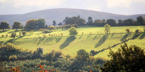 october-landscape
